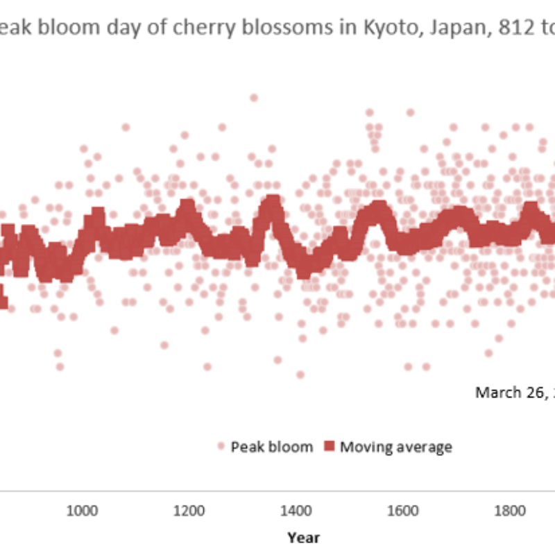 Opinion: Early cherry blossoms call for climate policy action, a focus on the Asian American environmental vote